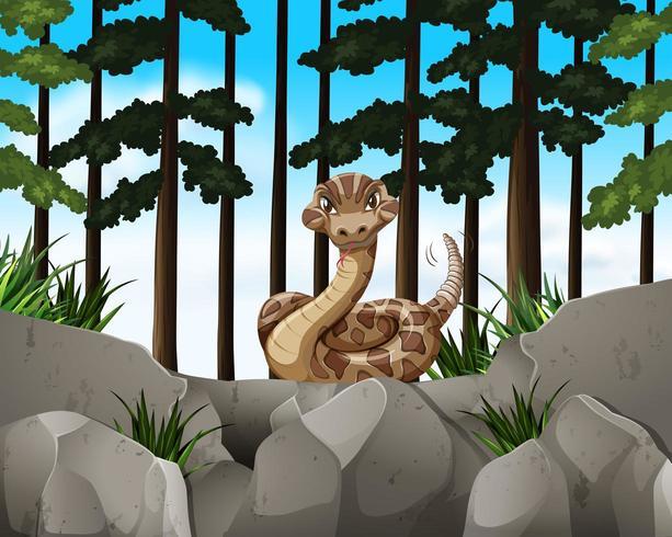 Waldszene mit wilder Schlange