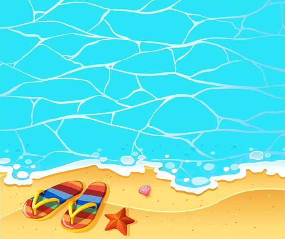 Scene with sandals on the beach vector