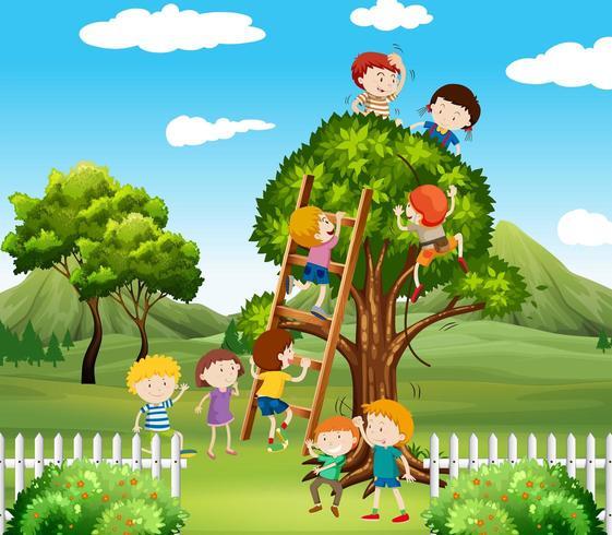 Crianças subindo a árvore no parque