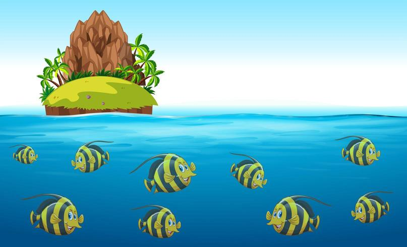 Scena con pesci che nuotano sotto il mare con l'isola in alto
