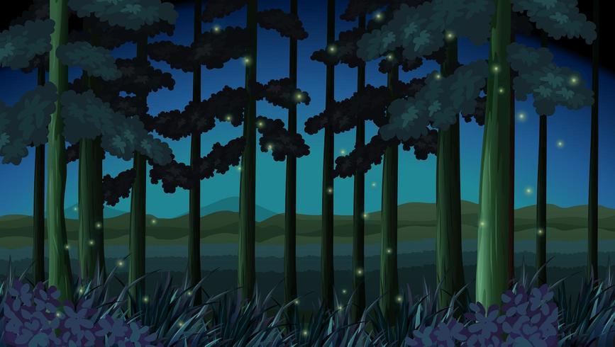 Cena de floresta à noite com vaga-lumes
