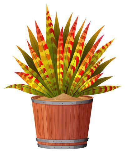 Una planta con hojas en maceta vector