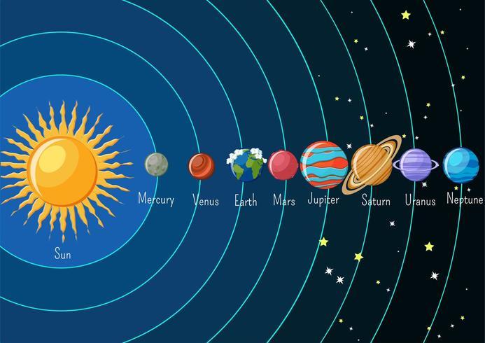 Infographie du système solaire avec le soleil et les planètes en orbite autour et leurs noms. vecteur