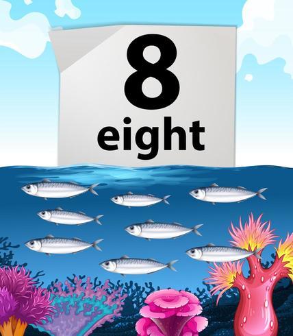 Número ocho y ocho peces nadando bajo el agua vector