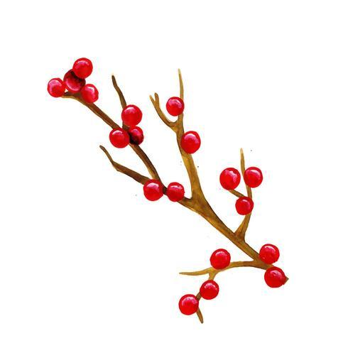 Dibujado a mano Acuarela Navidad Cereza vector