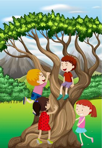 Barn som klättrar träd i parken