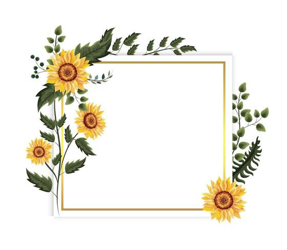 card with exotic sunflowers vector