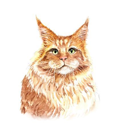 Acuarela retrato de gato naranja
