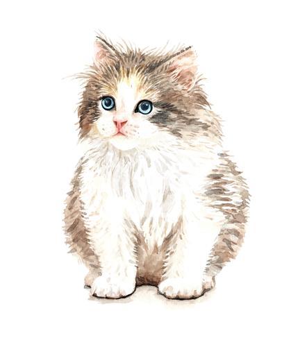 Portrait dessiné à la main de chat aquarelle assis vecteur
