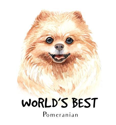 Akvarell handritad porträtt av Pomeranian hund
