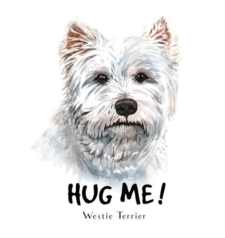 Watercolor hand drawn portrait of White Terrier dog