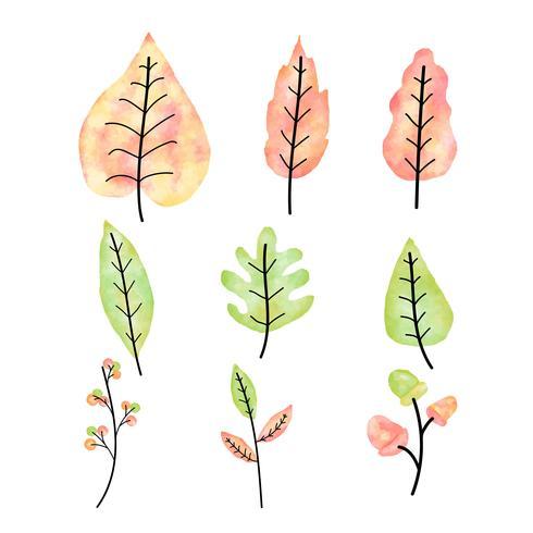 Conjunto de hojas de otoño acuarela vector