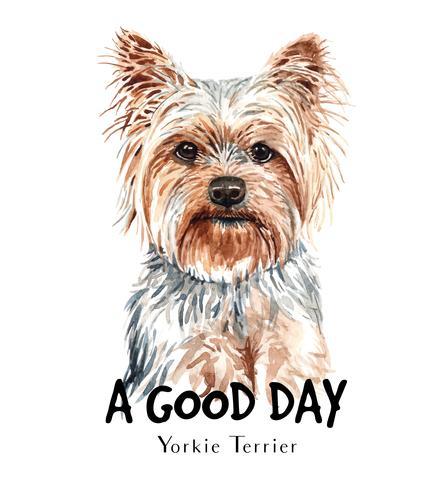 Aquarellporträt eines Yorkie Terrier-Hundes