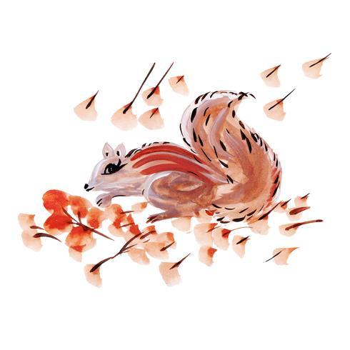 Esquilo em aquarela