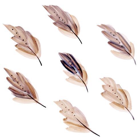 Set van aquarel bladeren