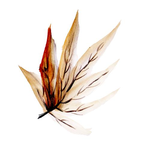 Foglia d'autunno ad acquerello