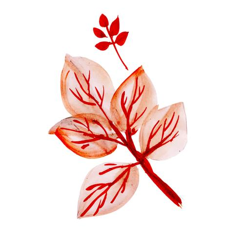 Mooie aquarel herfstbladeren