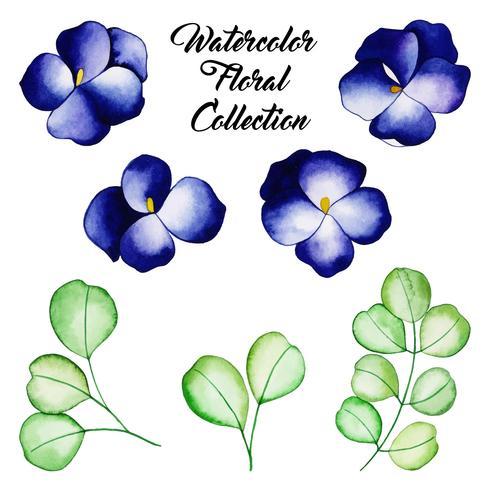 Colección floral acuarela