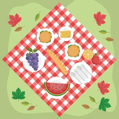 Flygfoto över mat på picknickfilten