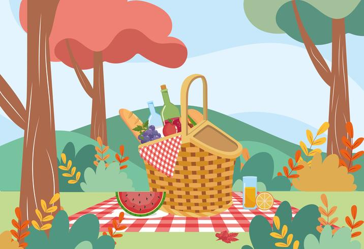 Picnic basket with wine and food in park