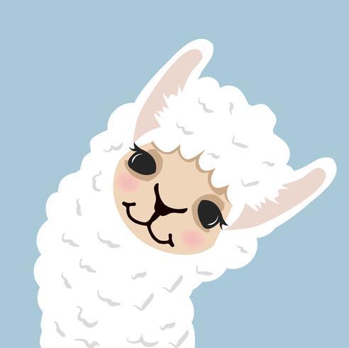 Schattig Lama alpaca hoofd