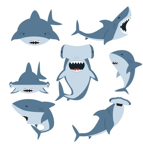 White shark and Hammerhead shark set vector