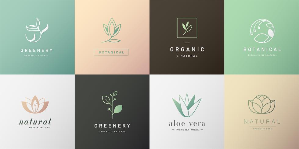 Natürliches Logo-Design für das Branding
