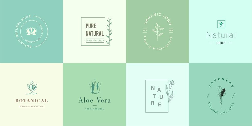Design de logotipo natural para branding