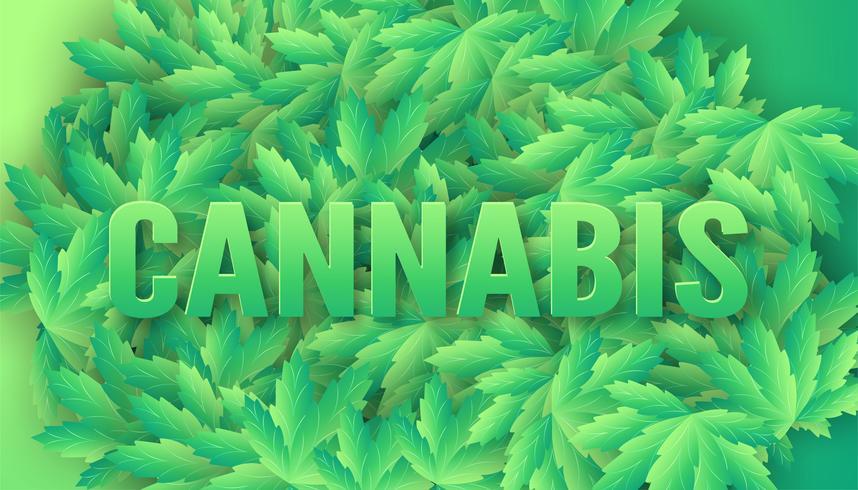 Hojas de cannabis con la palabra Cannabis en la parte superior