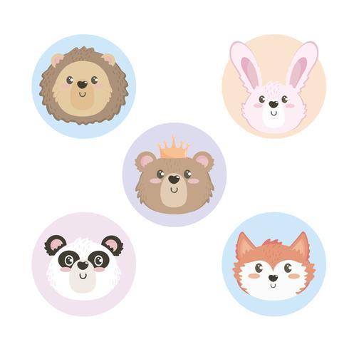 Set di facce di animali bambino