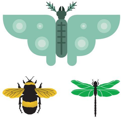 Bug con ali impostate