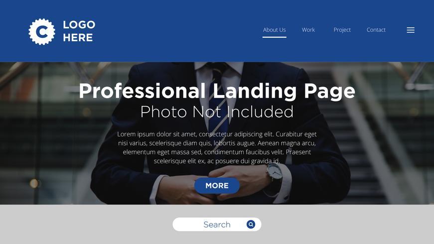 Pagina di destinazione professionale