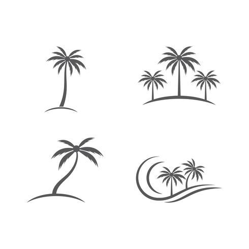 Conjunto de verano de palmera