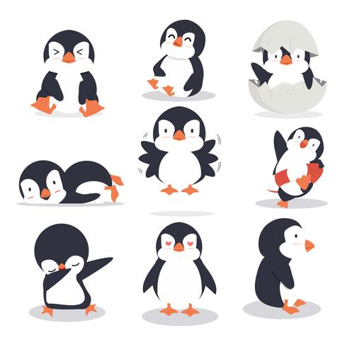 Conjunto de poses diferentes de pinguim bonitinho vetor