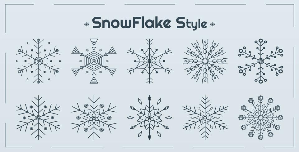 Set of Snowflake Styles  vector