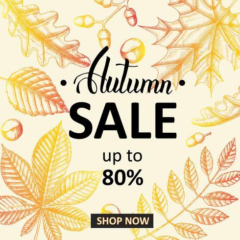 Bannière de vente d'automne avec des feuilles de griffonnage