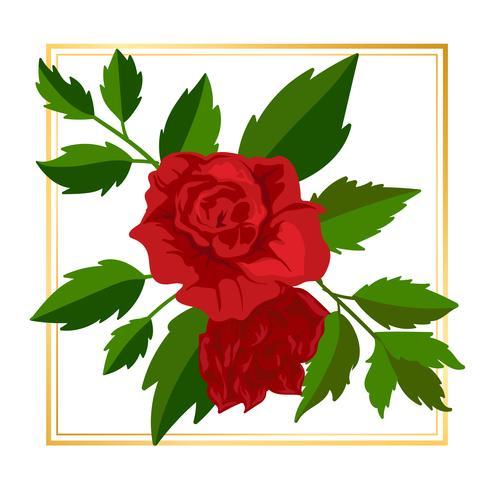 Flor rosa enmarcada vector