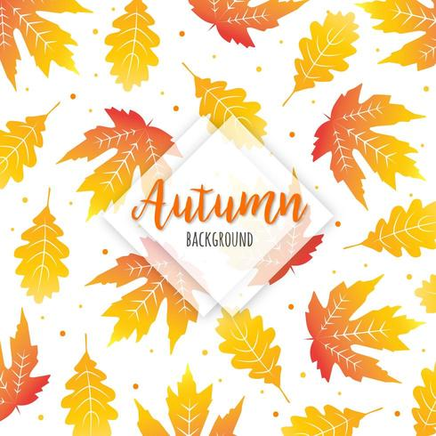 Hermoso fondo colorido de hojas de otoño vector