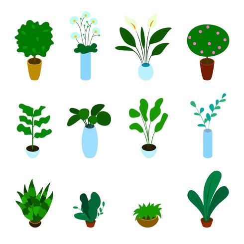 Isometric vector set of potted plants