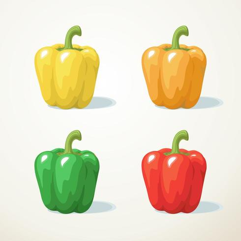 Bunter Gemüsepaprikasatz