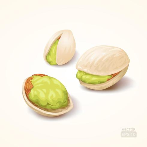 Pistachios on brown background vector