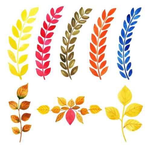 Conjunto de colección de hojas multicolores