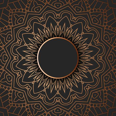 Tribal mandala design vector