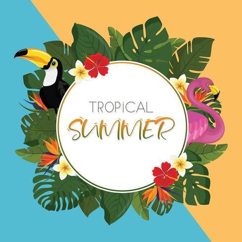 Conception de cadre rond d'été tropical vecteur
