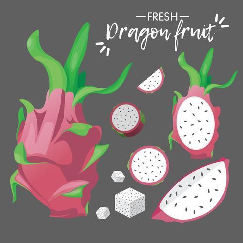 coleção de fruta-dragão fresca