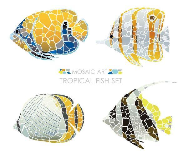 Insieme tropicale dei pesci del mosaico isolato su una priorità bassa bianca.
