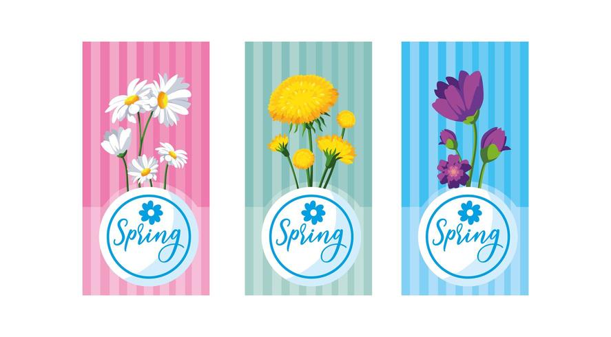 beautiful spring flowers set cards