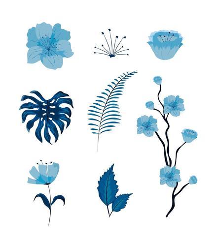 Conjunto de hermosas flores y hojas vector