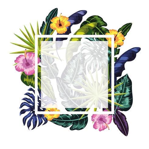 cornice quadrata con sfondo di piante di fiori vettore