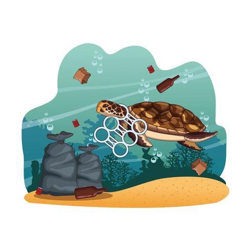 Sea turtle swimming with plastic around neck